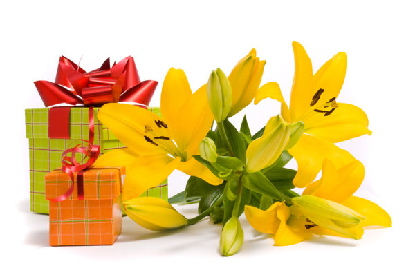 ++ HD picture material flowers and gifts 03++