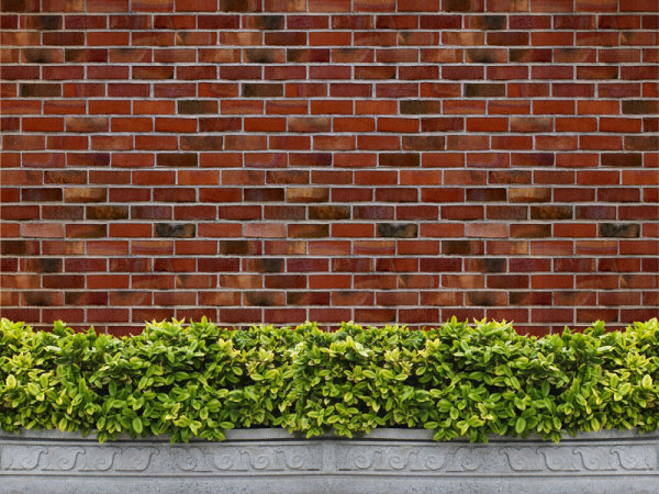 Brick wall background 01-HD pictures