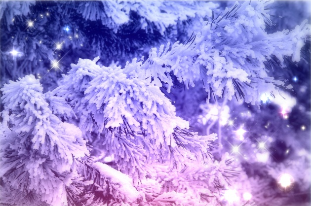 Christmas Snow photo download