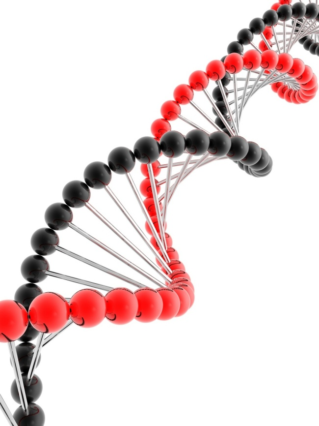 DNA Double Helix pictures
