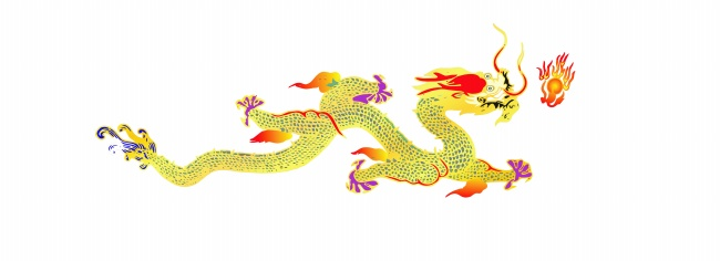 Dragon pattern picture