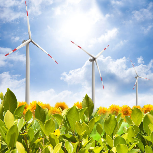 Ecological and wind power 05--HD pictures