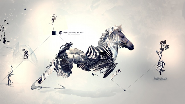 Fashion remix wind Zebra HD pictures