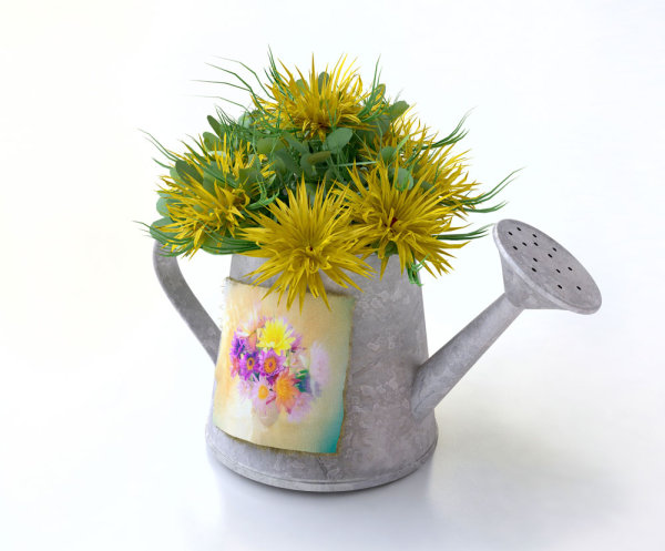 Flower pot 02--HD pictures