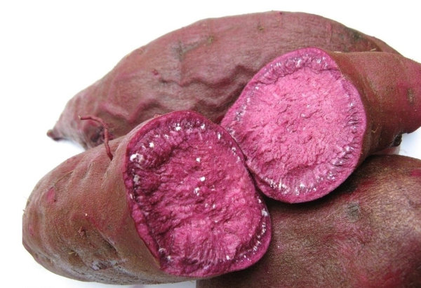 Fruit and vegetable standard definition footage  -  purple sweet potato 01