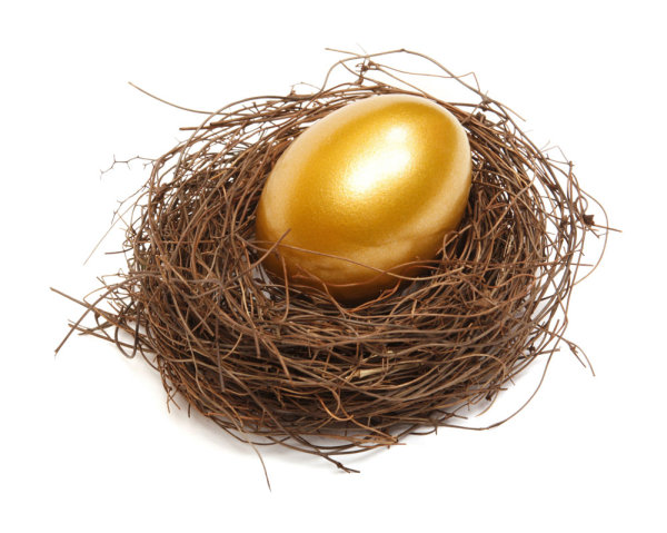 Golden egg nest 02--HD pictures