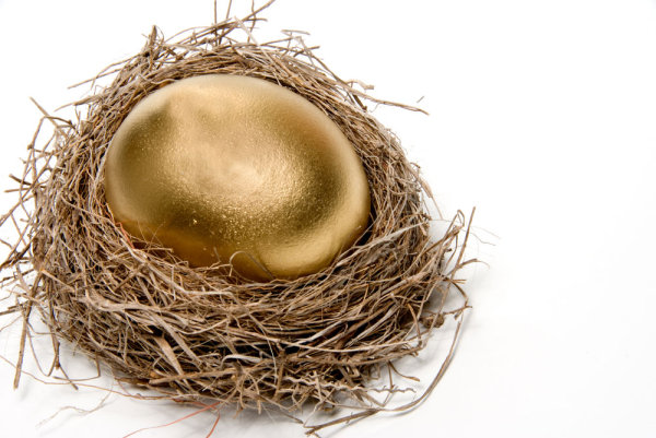 Golden egg nest 03--HD pictures