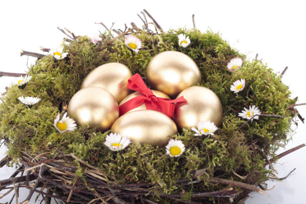Golden egg nest 04--HD pictures