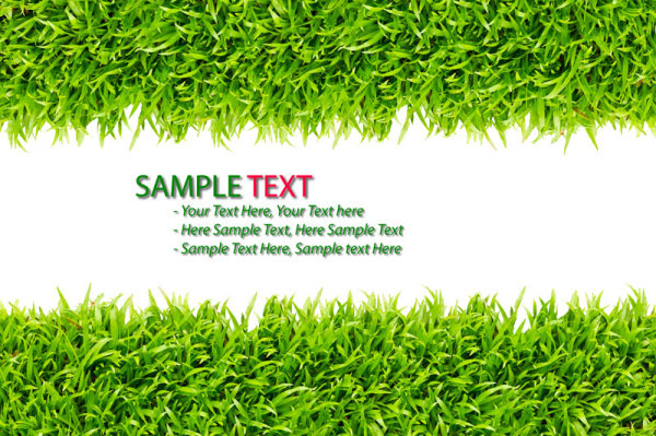 Green grass background 02--HD pictures