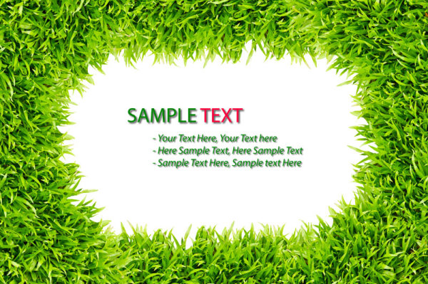 Green grass background 03--HD pictures