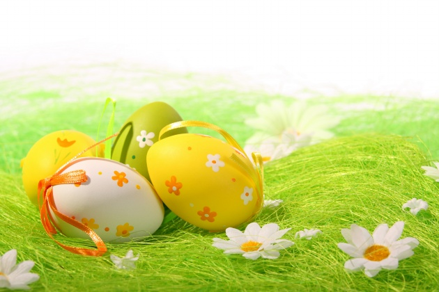 HD child egg pictures download