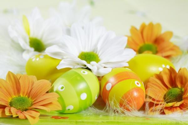 HD egg-design download