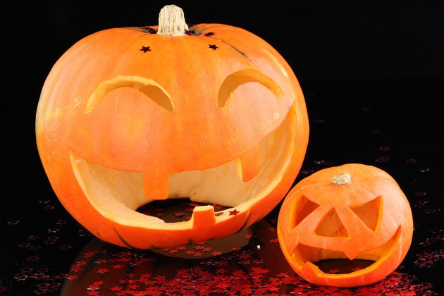 HD pumpkin picture download