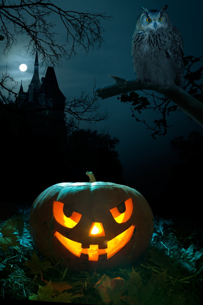 Night jack-o-lanterns picture download