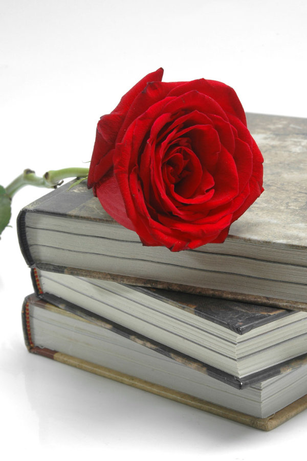 Old books and roses 03-HD pictures