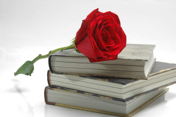 Old books and roses 04-HD pictures