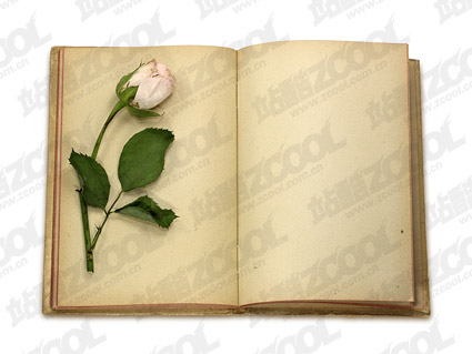 Roses and old books product pictures