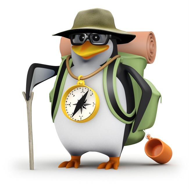 Three dimensional cartoon Penguin pictures