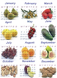 2013 calendar picture material download