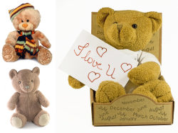 3 plush teddy bear HD picture