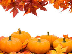 Autumn pumpkin box 01–HD pictures