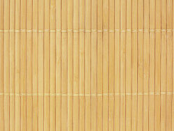 Bamboo background picture material
