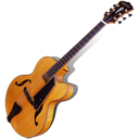 Beauregard Guitar Icon