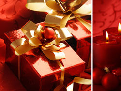 Beautiful Christmas design elements -22–HD pictures