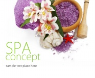 Beauty Spa Beauty picture material