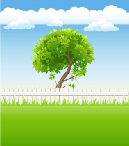 Cartoon grass backgrounds pictures