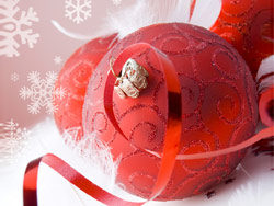 Christmas design elements -05 –HD pictures