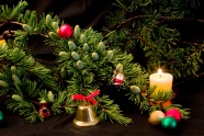 Christmas tree jewelry picture download