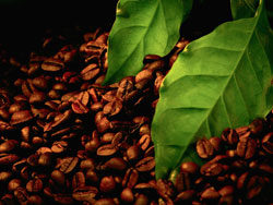 Coffee poster 02–HD pictures
