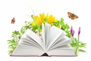 Creative flower plant picture book