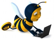 Cute bee pictures download