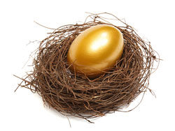 Golden egg nest 02–HD pictures