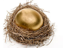 Golden egg nest 03–HD pictures
