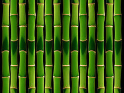 Green bamboo background picture material-2
