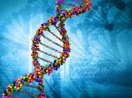 HD DNA gene pictures download download