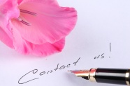 HD flower pen picture download