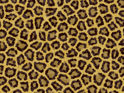 HD picture-Leopard fleece fabric 1