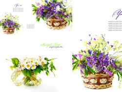 HD pictures-beautiful flower background patterns 2