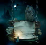 Night owl card under the picture