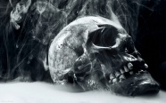 Skull picture material download