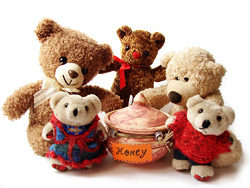 Teddy bear toy 03–HD pictures