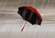 Umbrella design pictures