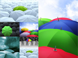 Umbrella-HD pictures