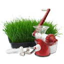 Wheatgrass Juice Icons