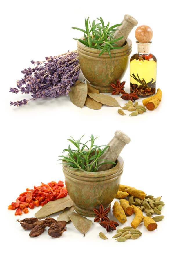 Various spices and garlic mortar-HD pictures 2