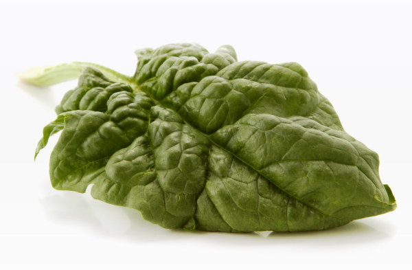 Vegetable HD pictures-3